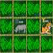 Alpha-Zoo: Concentration Game
